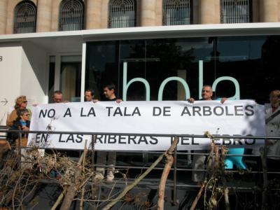 No a la tala de árboles en las riberas del Ebro