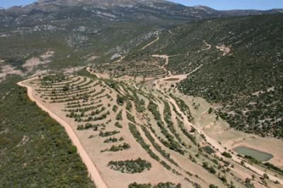 La finca de Fimbas S.A. en Bastarás y la cueva de Chaves (Huesca). Chunta solicita colaboración al estado español
